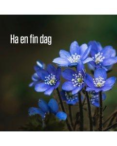 Ha en fin dag