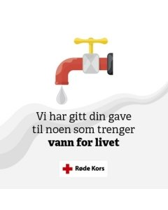 Bedrift: Gi vann for livet